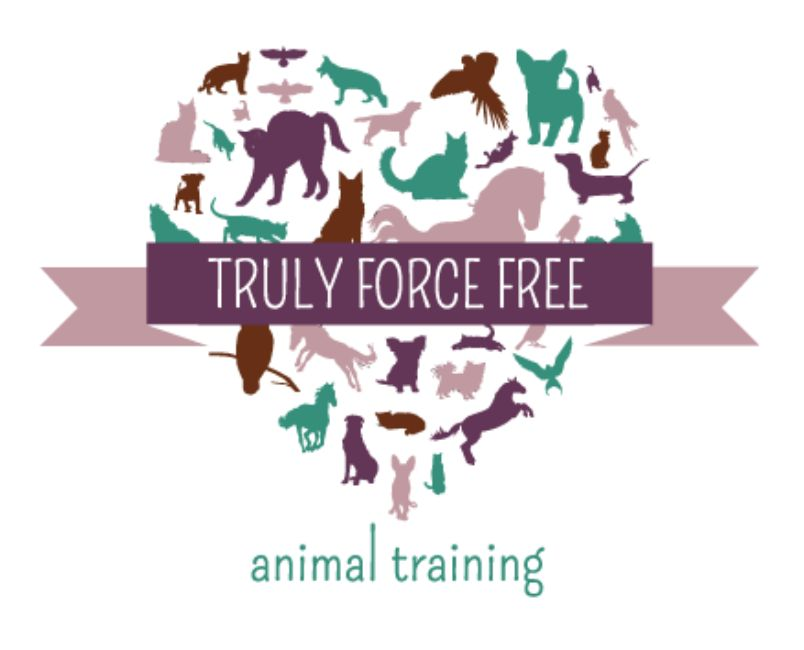 Truly Force Free Animal Training is an online training website!