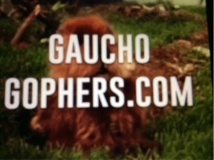 Gaucho gopher and Landscape pest Management
