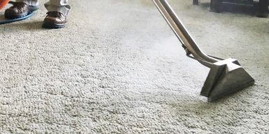 carpet clean floor cleaning steam professtional rugs fabric furniture upholstery