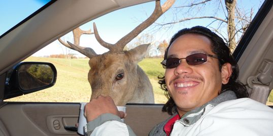 Smiling man wearing sunglasses feeding a deer with large antlers.
