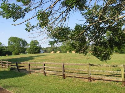 Batey Farm greenspace|Hendersonville, TN|photo by Susan Olivas