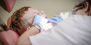 Dentist, Rochester, Dentist Near Me, Crown, Braces, Orthodontist, Veneers, Root Canal, Extract