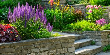 landscape pavers plants perennials annuals michigan weeds shrubs maintenance beds flowers weeding