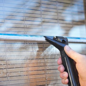 screen cleaning edmonds