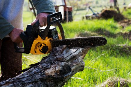 Tree Felling Brush Chipping Bucking Services Chainsaw Operator Stump Extraction