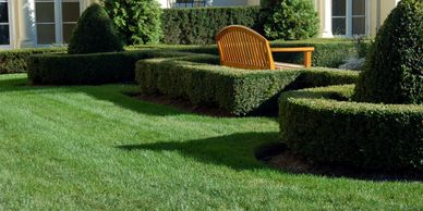 Lawn Care in Rancho Cucamonga, CA