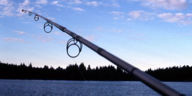 Fishing rod extended over a lake at dusk.