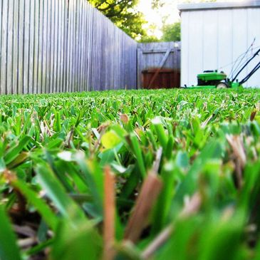 Lawn care. Cutting. Trim. Landscape. Grass. Service. Louisville.