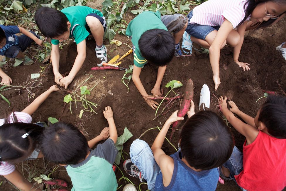 Kids getting their hands dirty by gardening.