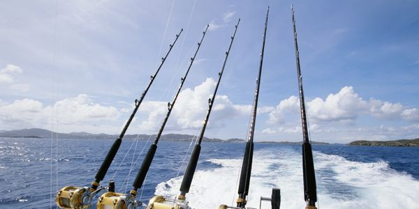 Sport fishing in the area