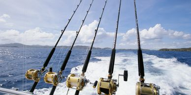 Tons of deep sea fishing charters available in Clearwater Beach, Florida