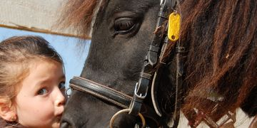 horses, therapeutic riding, baltimore sun, harford magazine, linda burkins