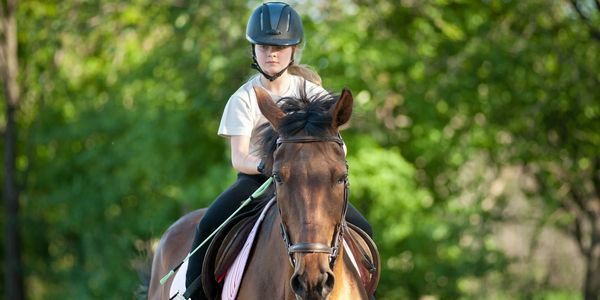 Horse clubs allow children with horse dreams to make a lifetime of memories