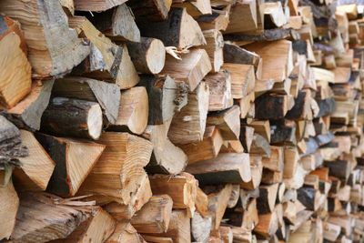 Eucalyptus firewood, long burning, hard to light, use pine wood, creosote concerns, firewood safety
