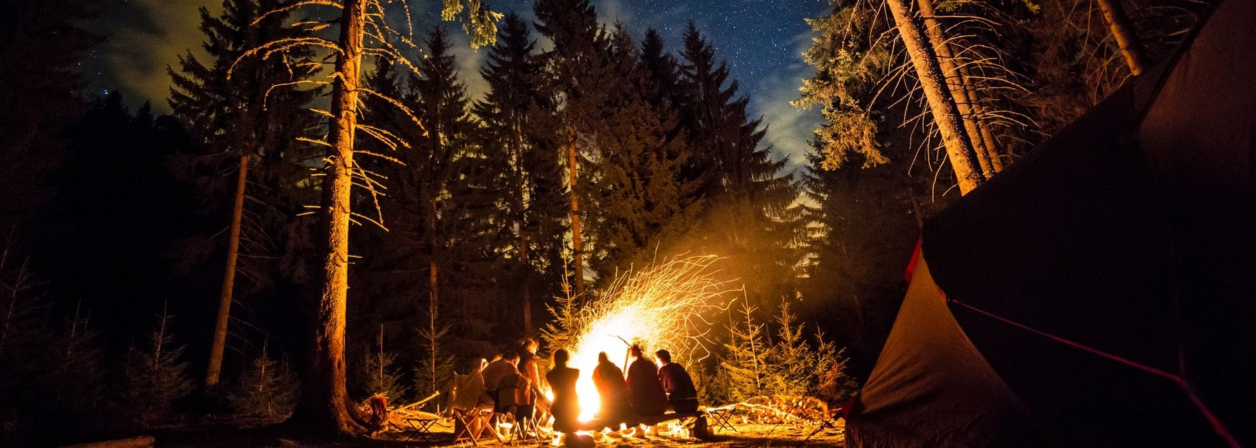 A group of people sitting around a campfire in the woods.