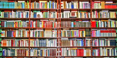 Library shelves holding books including books on caring