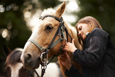 Equine care also involes the desisions you make about the property you develop for your horses.