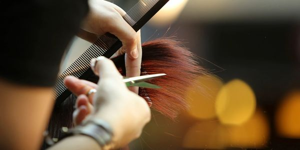 Hair cut, style, toners, highlights, professional stylists, Studio 19 is family owned and operated.