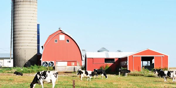 Farm & Ranch services in Murdo SD