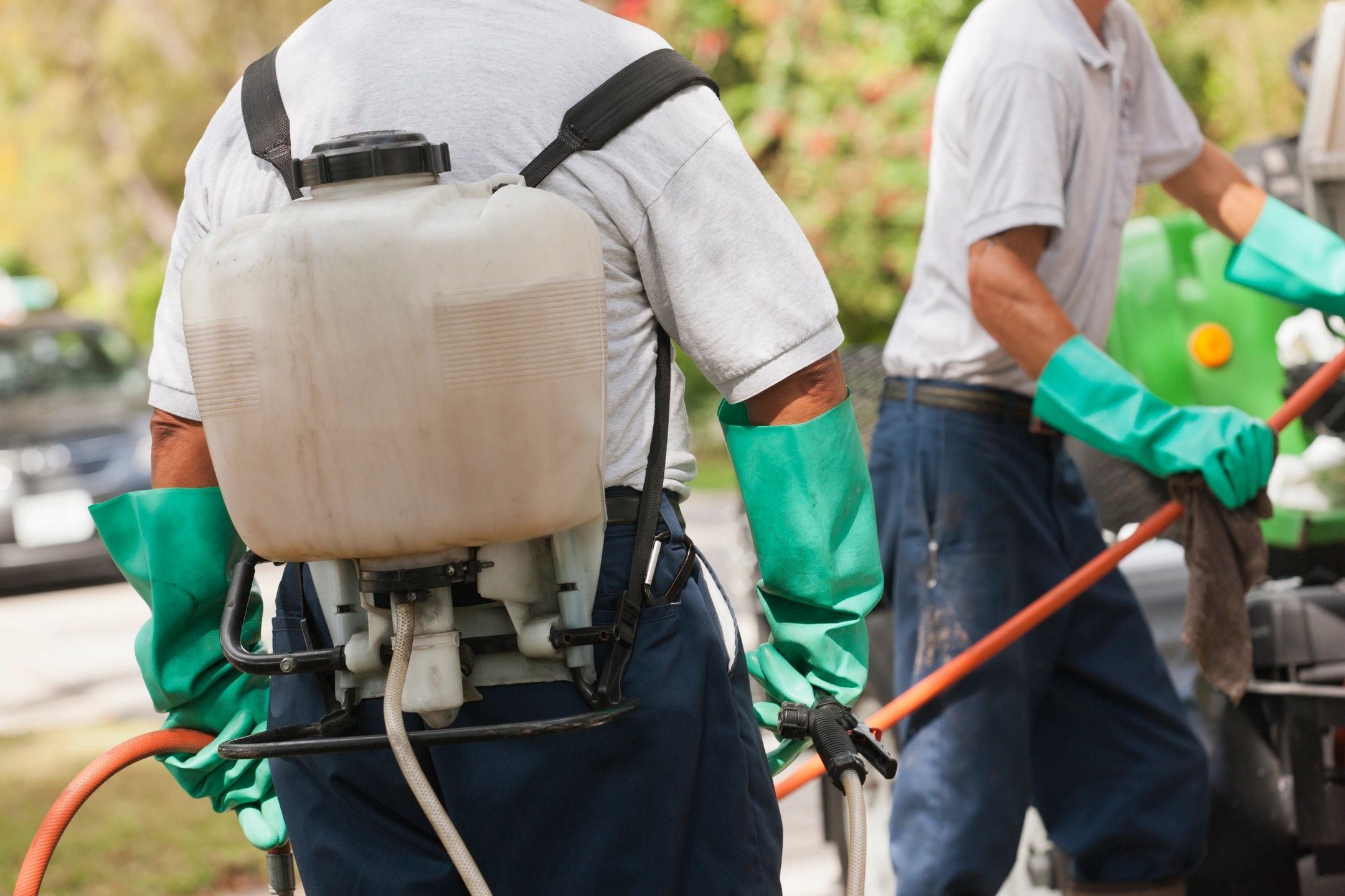 pest control services in Coimbatore, pest control services in Erode, pest control services in Salem,