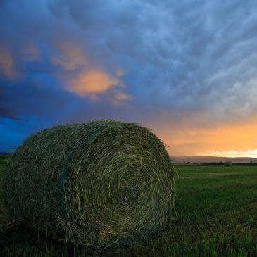 Storm brewing with freshly baled round bale of alfalfa