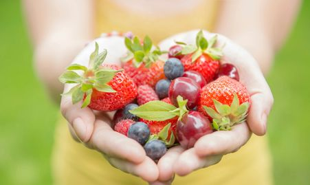 Wholesome, raw foods to feed our bio individuality.  Natural foods; nutrients to feed our bodies