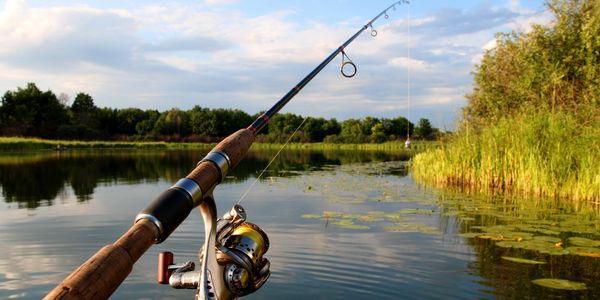Learn to fish, tournament fishing basics, how to prepare for tournament fishing, bass fishing, train