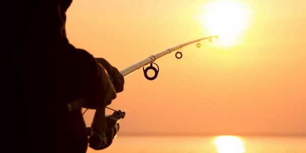 chicago fishing charters