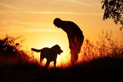 Owner with his dog at sunset.