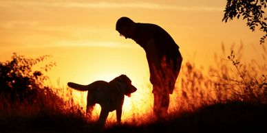 Sunset sillouette of man and large dog