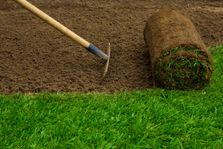 Turfing harrow