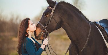 Professional, Experienced horse care services