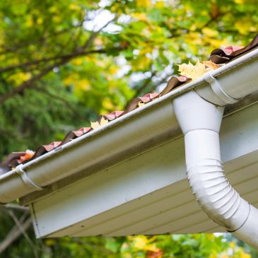 A.R.C. Property Maintenance Gutter cleaning image