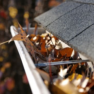 gutter cleaning edmonds, wa