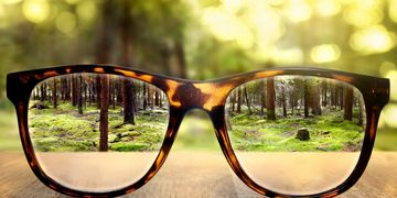 Alt = large pair of reading glasses, reading glasses magnifying woodland background