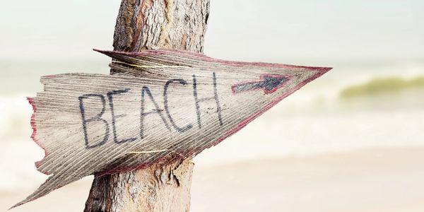 A tree with a Beach sign and arrow. Ocean City, MD | Beach Life | Sunset Island