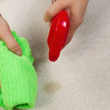 Spray cleaner and a hand holding a rag.