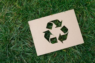 recycle logo on green grass