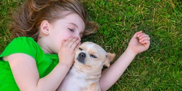 A child whispering to a dog.