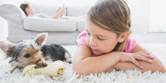 Dog and kid on carpet