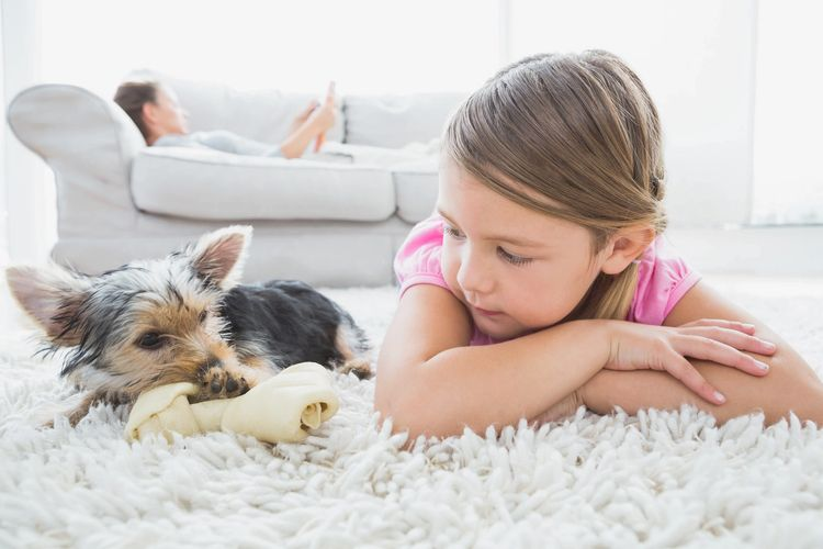 Girl with Yorkie puppy