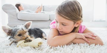 safe carpet cleaning of children and pets