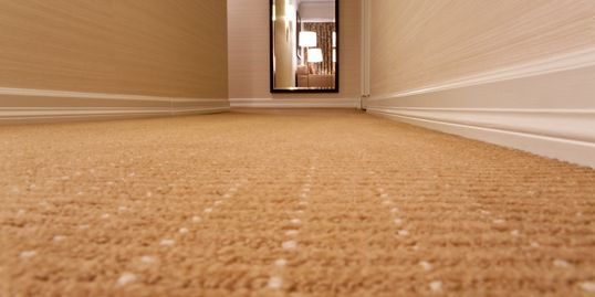 Floor cleaning services for carpet. Carpet cleaning and carpet extraction.