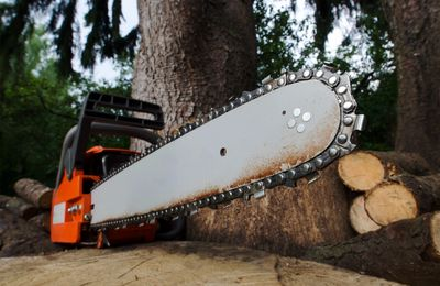 chainsaw tree cutting  salem tree removal tree trimming tree work pruning cut up wood land clearing
