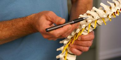 Chiropractic, spine, non-invasive treatment of the neuromuscular systems.