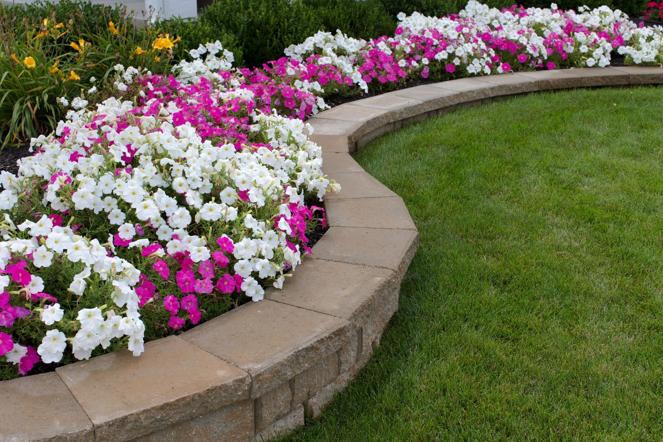 Complete your outdoor living space with plants, retaining walls, patios, fireplace, pavers and more.