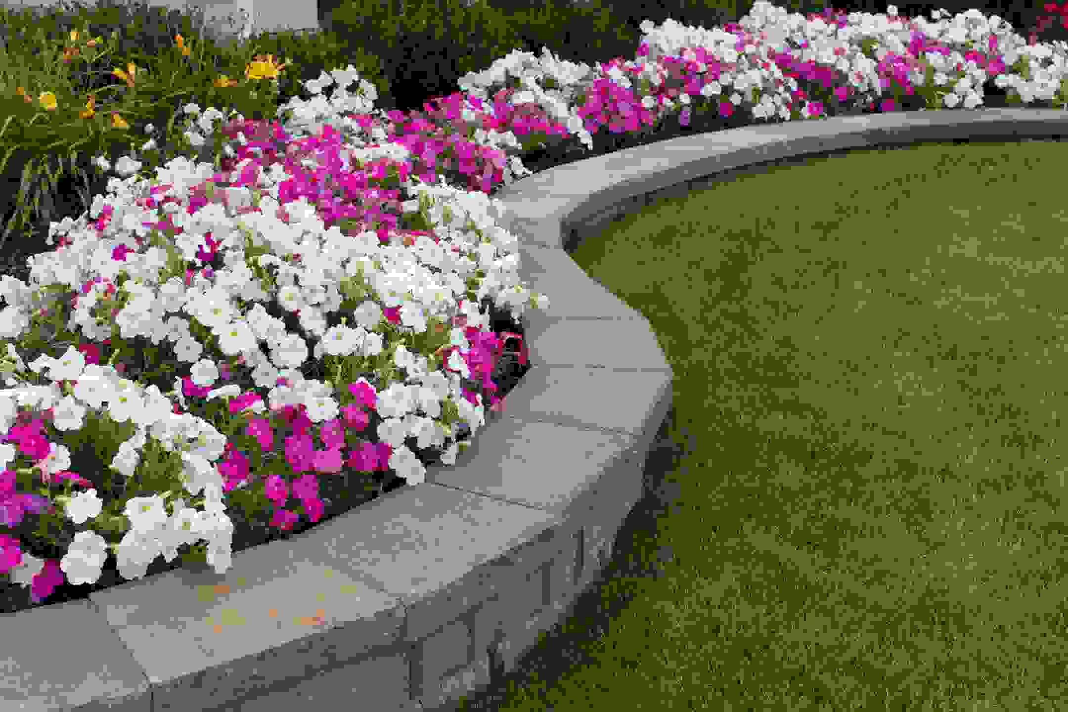 close up of retaining wall and flower bed combination