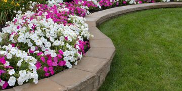 landscape, flowers, annuals, petunias, michigan, landscaping, romeo, retaining wall, bricks, plants