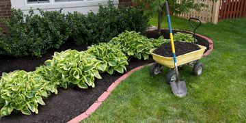 Garden installations and planting services in Bolton, Caledon, Caledon East, Palgrave