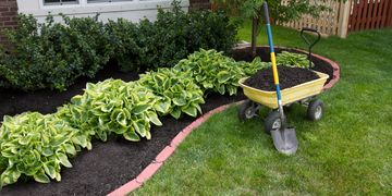 Washington DC landscaping and concrete services.